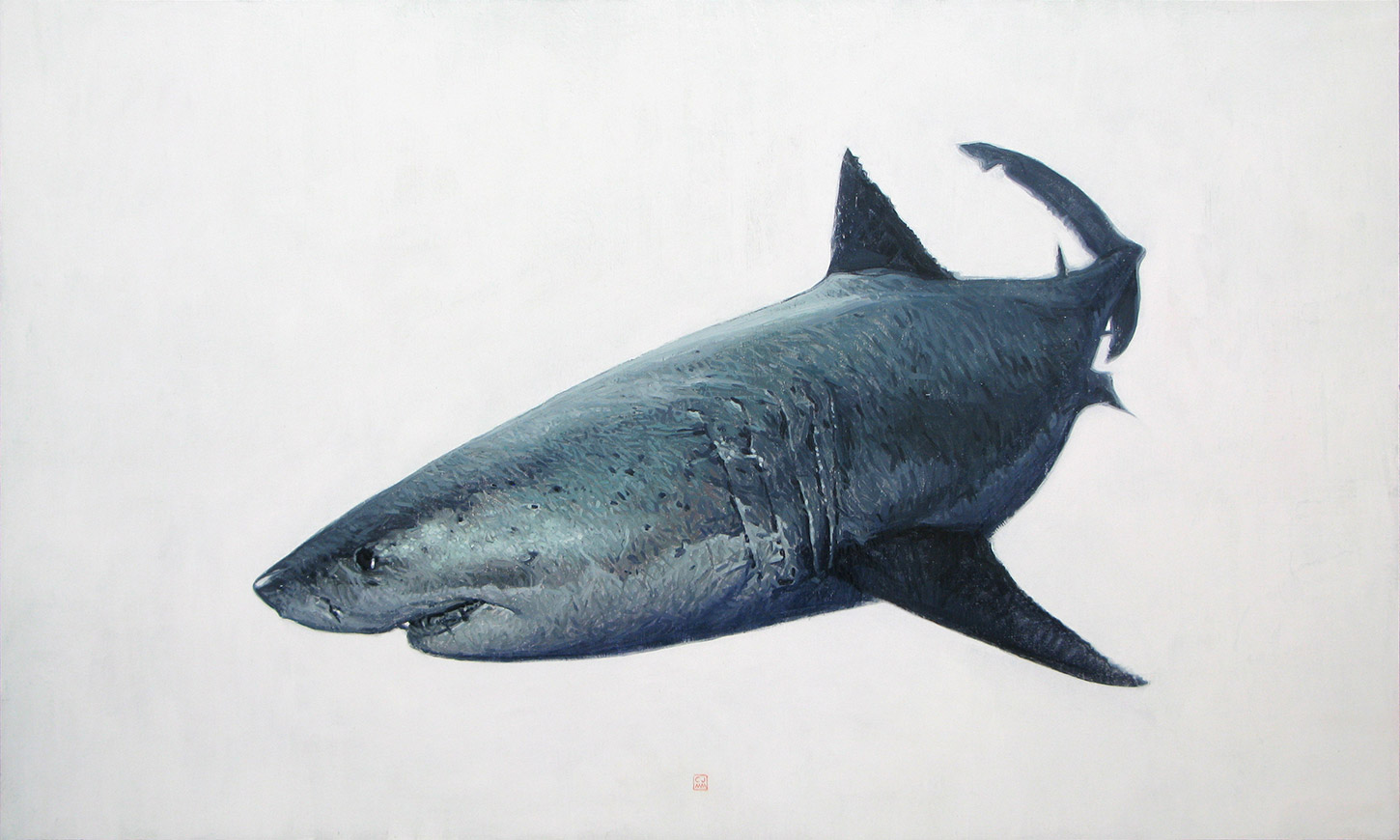 Great White Shark 02 The Life Underwater Series Oil Painting