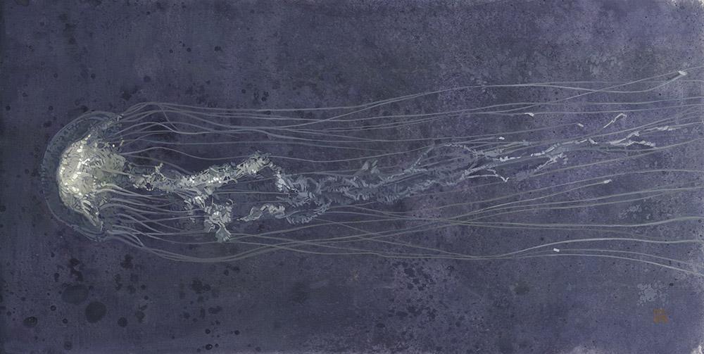 Jellyfish 06 The Atlantic Sea Nettle Drawing Illustration 50 x 25 cm